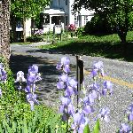 Spring at Harpers Ferry Guest House