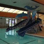 Bilde fra Grand Marquis Waterpark Hotel & Suites