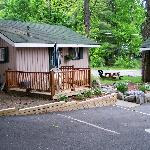Bilde fra The Balsam Motel & Cottages