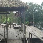 Amazon Village Jungle Lodge照片