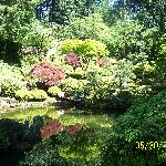  Japanese and Rose Garden in Portland