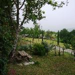 Agriturismo Lucatello照片