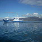 Views of the mountains and of fishing boats while on board are marvelous.