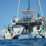 Maui Classic Charters