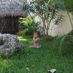Our son enjoying the Kohunlich garden (with traditional Mayan hut where the on-site managers liv