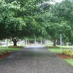  The public park in front