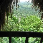Tubagua Plantation Eco Lodge의 사진