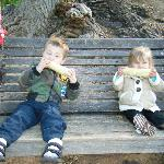 Kids eating corn on the tree swing