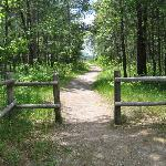 The Huron National Forest is accessible to motorists and hikers.