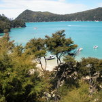 Wilsons Abel Tasman National Park