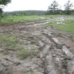  Muddy ruts were nearly impassable.