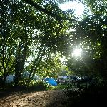 Photo de Burnbake Campsite