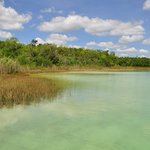 Punta Laguna Nature Reserve