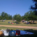 A view of the expansive lawn, perfect for a picnic