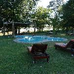 Foto de Thamalakane Safari Lodge