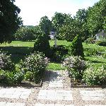 A view of the garden