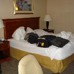 Ok, our luggage and clothes on the bed