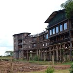 Photo de Treetops Lodge