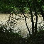  The Cottonwood River flows past the property.