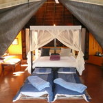Foto van Jaci's Safari Lodge