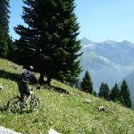 Flowmtb, Mountain Bike Chalet의 사진