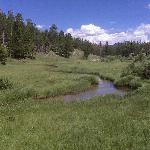 Photo of Beaver Meadows Visitor Center