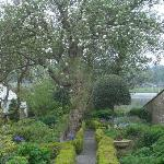 Kirkcudbright - Garden of Broughton House (NTS)