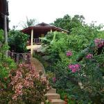 Beautifully maintained gardens among villas at Samui Mountain Village