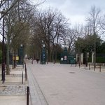 Pepiniere Park