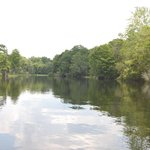 Wakulla Springs