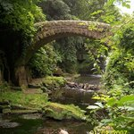 Jesmond Dene Park
