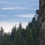 Mount Seymour Provincial Park