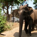 Mae Malai Elephant Training Camp