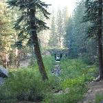 The creek (under very low conditions), not more than 100 yds. from several campsites on the nort