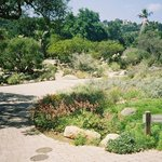 Photo of Santa Barbara Botanic Garden