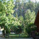  View outside of cabin