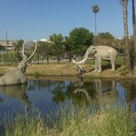 Park La Brea
