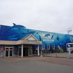 Photo of Echizen Matsushima Aquarium