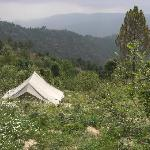 camping at mukteshwar