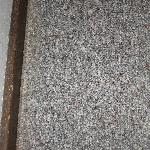 indoor/outdoor carpeting