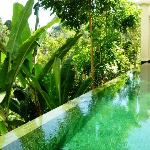 Love the private swimming pool~