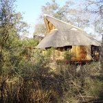 Lukimbi Safari Lodge照片