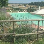 Photo of Podere della Collina