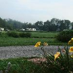 Foto van Pegasus Farm Campground