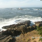 View from Cape Arago
