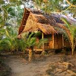 Photo de Kosrae Village Ecolodge & Dive Resort