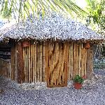  bamboo hut