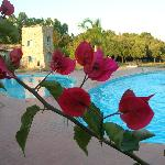 Φωτογραφία: Corte Bianca Club Resort
