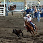 ‪Buffalo Bill Cody Stampede Rodeo‬