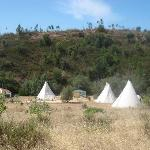 Tipis from main house